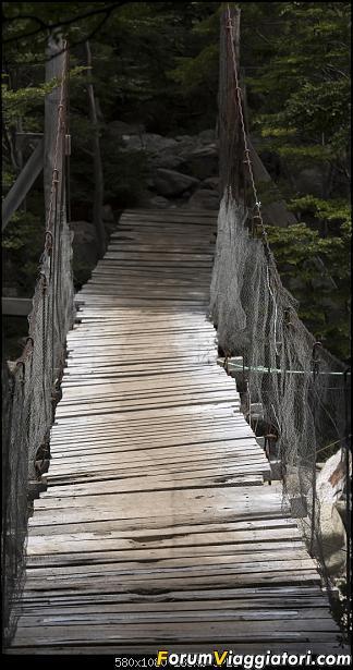 In Patagonia verso la fin del mundo-_dsc6709.jpg