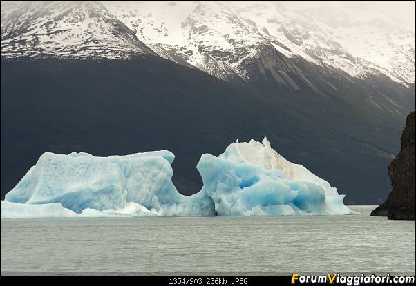 In Patagonia verso la fin del mundo-_dsc6853.jpg