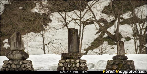 In Giappone in cerca dei ciliegi in fiore-_dsc8714.jpg