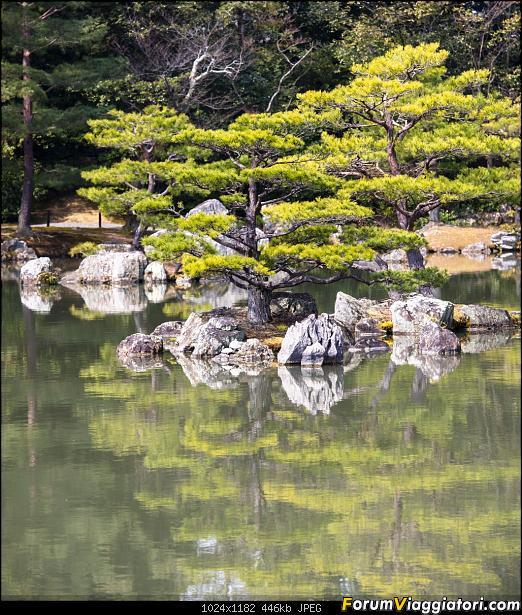 In Giappone in cerca dei ciliegi in fiore-_dsc9461.jpg