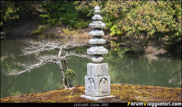 In Giappone in cerca dei ciliegi in fiore-_dsc9474.jpg