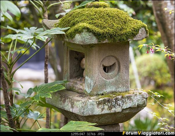 In Giappone in cerca dei ciliegi in fiore-_dsc9617.jpg