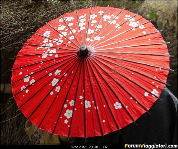 In Giappone in cerca dei ciliegi in fiore-_dsc9775.jpg