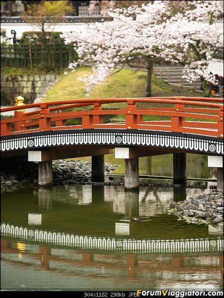 In Giappone in cerca dei ciliegi in fiore-_dsc0008.jpg