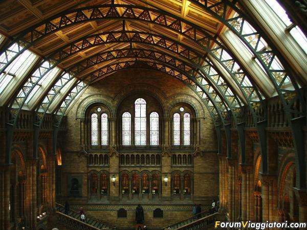 Londra Natural history museum 2005