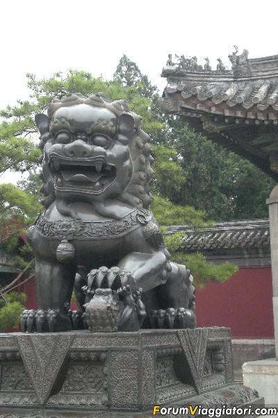 Cina 2008