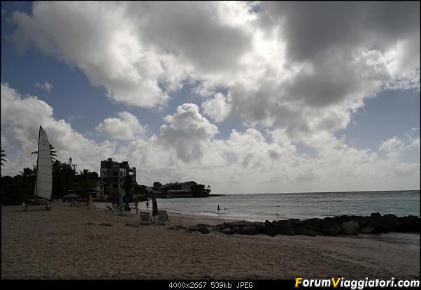 Barbados in compagnia-img_3340-m.jpg