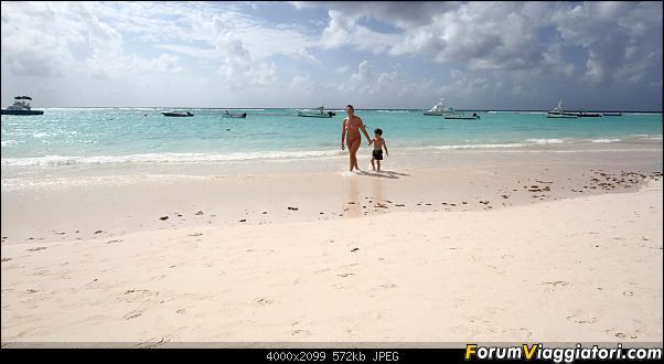 Barbados in compagnia-img_3364-m.jpg