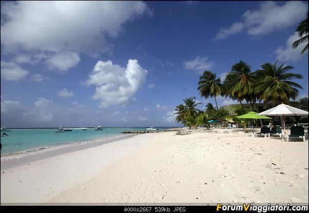 Barbados in compagnia-img_3352-m.jpg