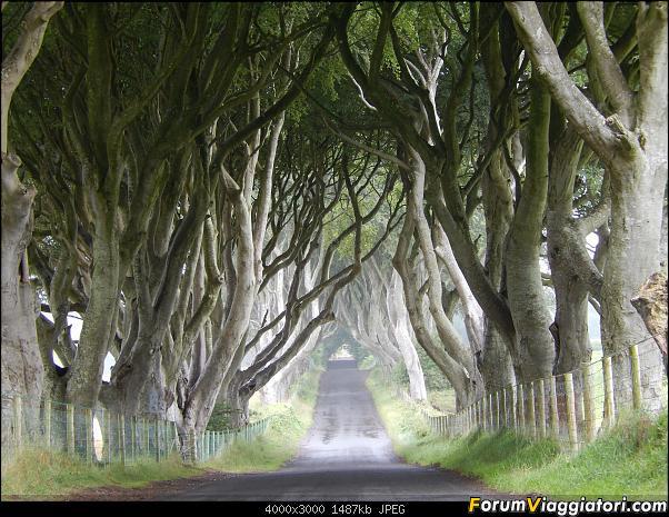 Irlanda del Nord: una vera perla!-dscn1568.jpg