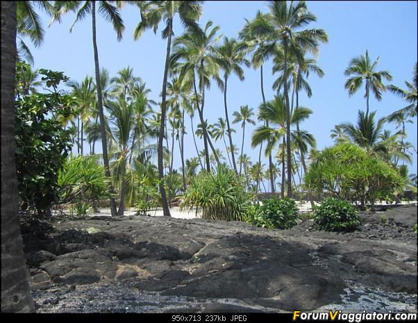 Hawaii Islands - Take your time!!! (agosto 2012)-img_2001.jpg