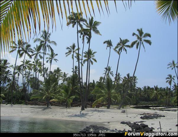 Hawaii Islands - Take your time!!! (agosto 2012)-img_2035.jpg