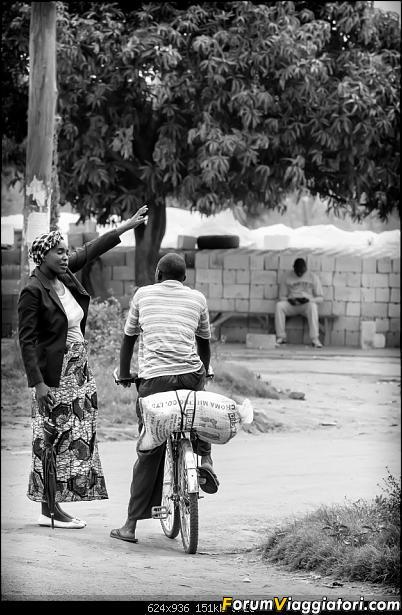 Zambia, Zimbabwe, Botswana..e anche un po' di Dubai: anteprima foto-_dsc0411_bn.jpg