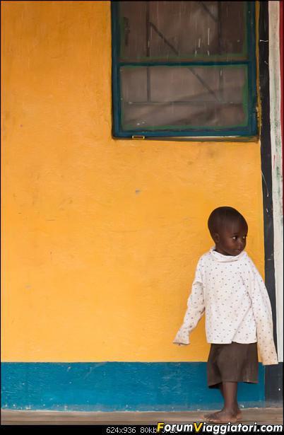 Zambia, Zimbabwe, Botswana..e anche un po' di Dubai: anteprima foto-_dsc0416.jpg