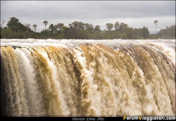 Zambia, Zimbabwe, Botswana..e anche un po' di Dubai: anteprima foto-_dsc0456.jpg