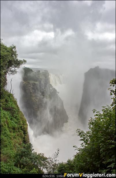 Zambia, Zimbabwe, Botswana..e anche un po' di Dubai: anteprima foto-sei_5518.jpg