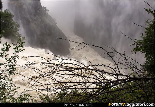 Zambia, Zimbabwe, Botswana..e anche un po' di Dubai: anteprima foto-sei_5522.jpg