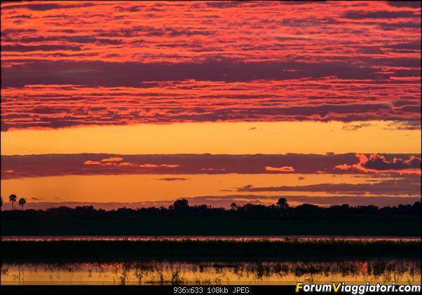 Zambia, Zimbabwe, Botswana..e anche un po' di Dubai: anteprima foto-_dsc1345.jpg