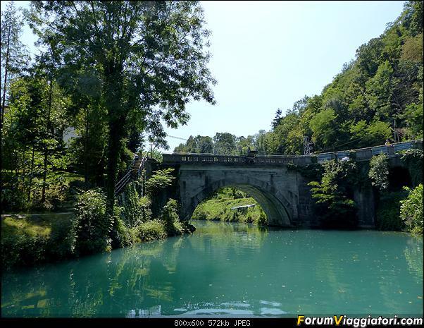 Slovenia, polmone verde d'Europa-29-p1780230.jpg