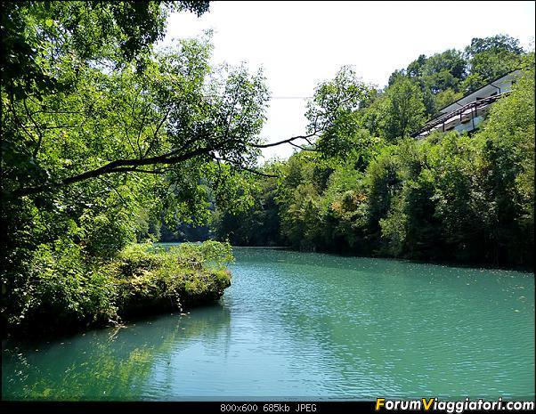 Slovenia, polmone verde d'Europa-30-p1780234.jpg