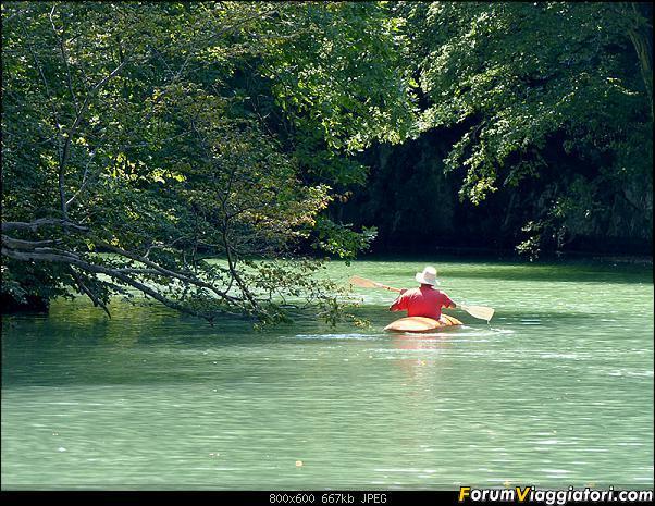 Slovenia, polmone verde d'Europa-33-p1780254.jpg