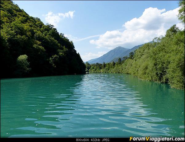 Slovenia, polmone verde d'Europa-35-p1780313.jpg