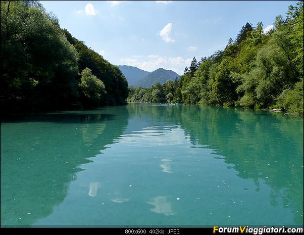 Slovenia, polmone verde d'Europa-37-p1780318.jpg