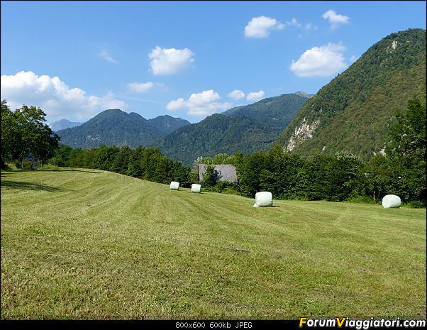 Slovenia, polmone verde d'Europa-45-p1780379.jpg