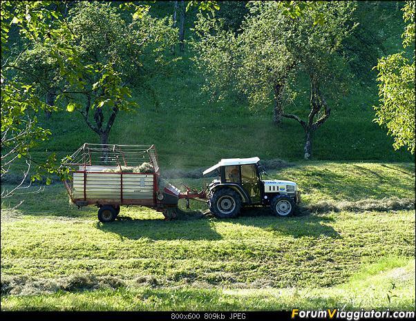 Slovenia, polmone verde d'Europa-46-p1780382.jpg