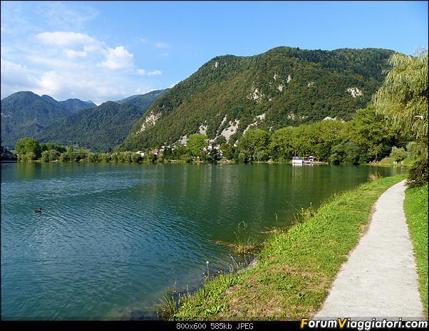 Slovenia, polmone verde d'Europa-51-p1780420.jpg
