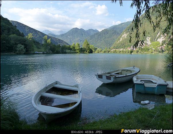 Slovenia, polmone verde d'Europa-52-p1780419.jpg