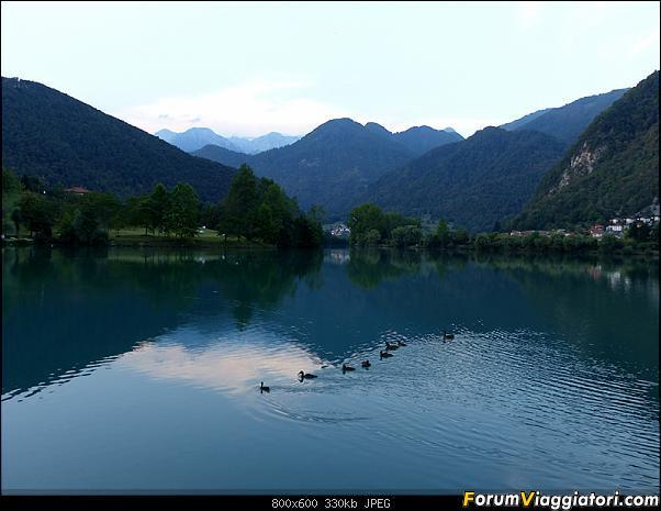 Slovenia, polmone verde d'Europa-54-p1780434.jpg