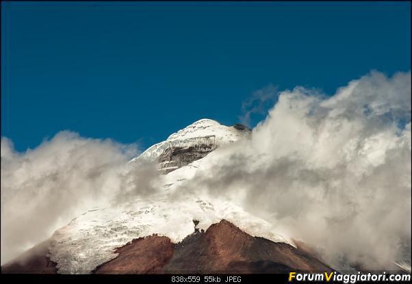 Neve, lava e ...bestioline: Ecuador e Galapagos, un po' di foto in anteprima-_dsc2100.jpg
