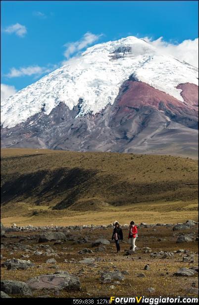 Neve, lava e ...bestioline: Ecuador e Galapagos, un po' di foto in anteprima-_dsc2118.jpg