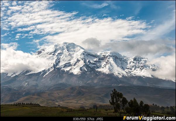 Neve, lava e ...bestioline: Ecuador e Galapagos, un po' di foto in anteprima-_dsc2308.jpg