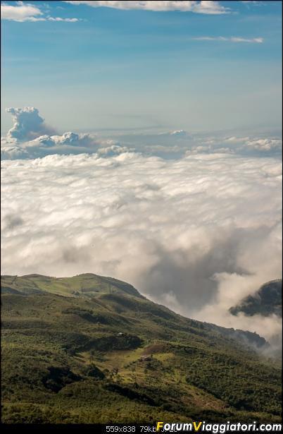 Neve, lava e ...bestioline: Ecuador e Galapagos, un po' di foto in anteprima-_dsc2444.jpg