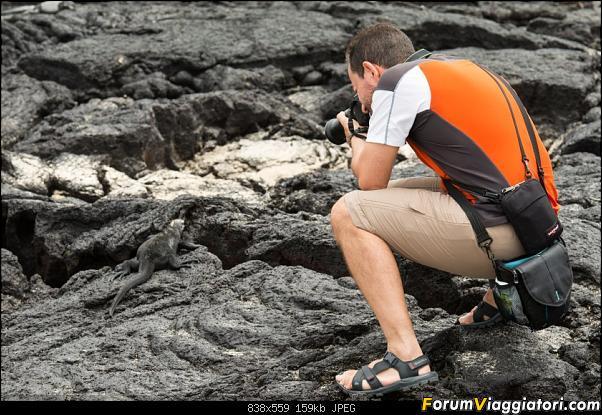 Neve, lava e ...bestioline: Ecuador e Galapagos, un po' di foto in anteprima-_dsc2632.jpg