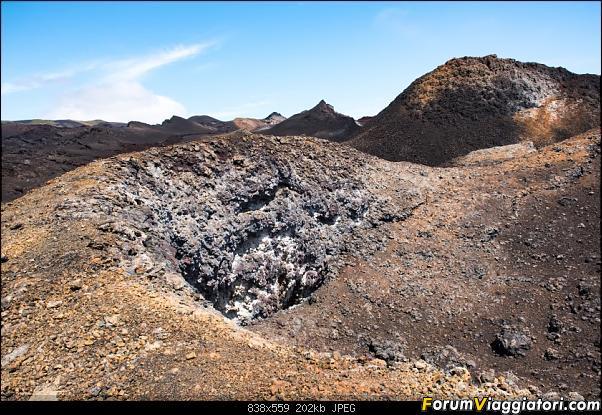 Neve, lava e ...bestioline: Ecuador e Galapagos, un po' di foto in anteprima-dsc_6785.jpg