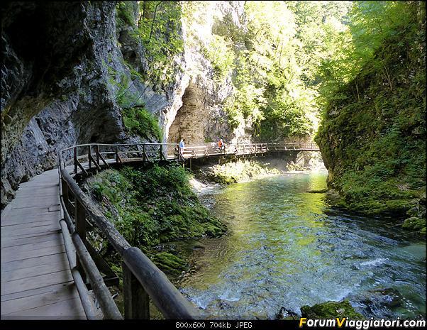 Slovenia, polmone verde d'Europa-278-p1800096.jpg