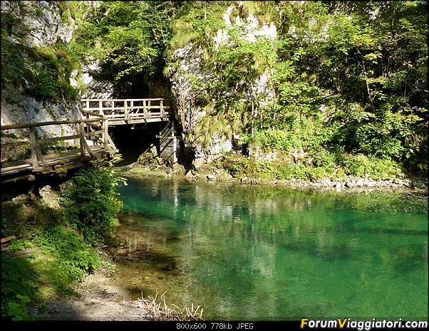 Slovenia, polmone verde d'Europa-280-p1800113.jpg