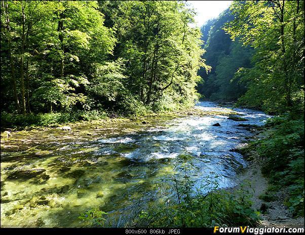 Slovenia, polmone verde d'Europa-292-p1800250.jpg
