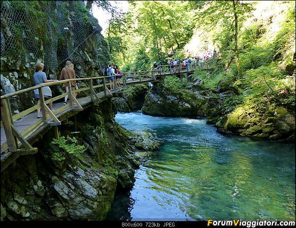 Slovenia, polmone verde d'Europa-295-p1800292.jpg