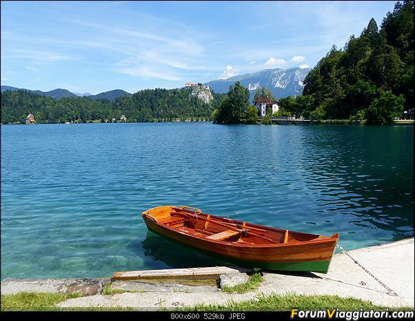 Slovenia, polmone verde d'Europa-298-p1800324.jpg