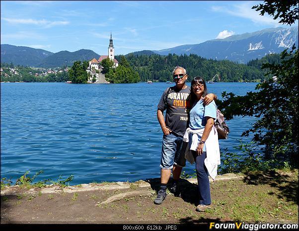 Slovenia, polmone verde d'Europa-301-p1800350.jpg