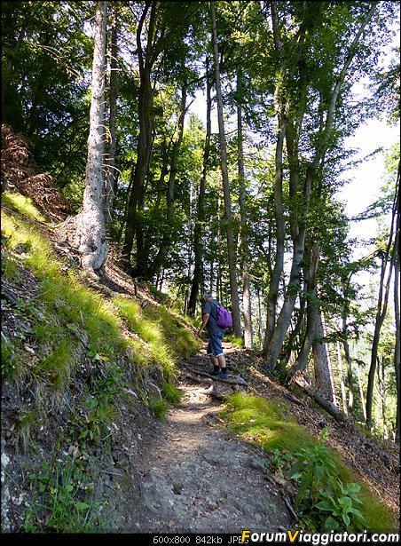 Slovenia, polmone verde d'Europa-305-p1800388.jpg