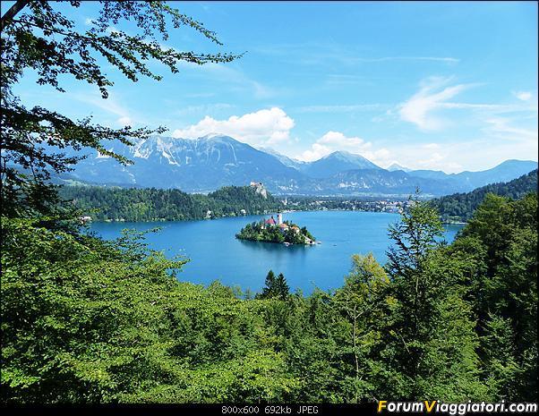 Slovenia, polmone verde d'Europa-306-p1800381.jpg