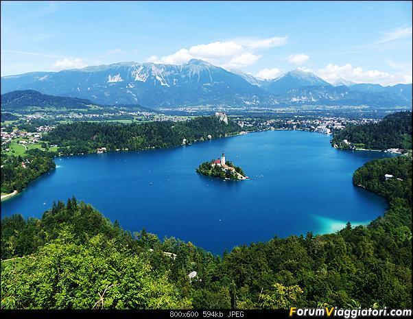 Slovenia, polmone verde d'Europa-308-p1800419.jpg