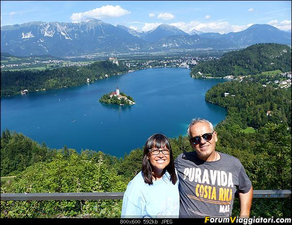 Slovenia, polmone verde d'Europa-310-p1800466.jpg