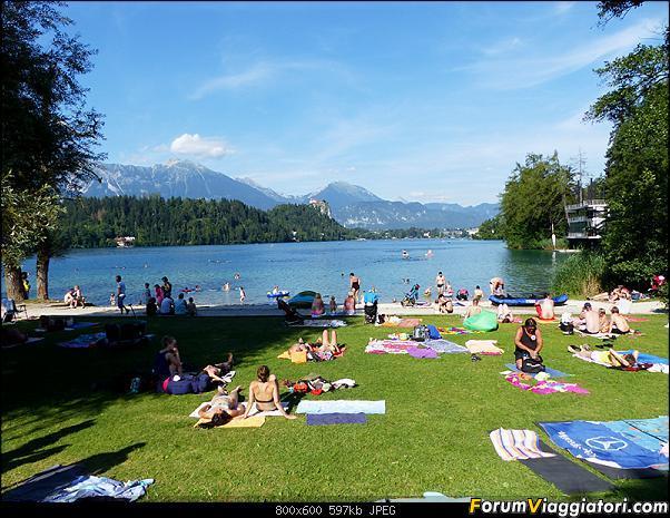 Slovenia, polmone verde d'Europa-320-p1800524.jpg