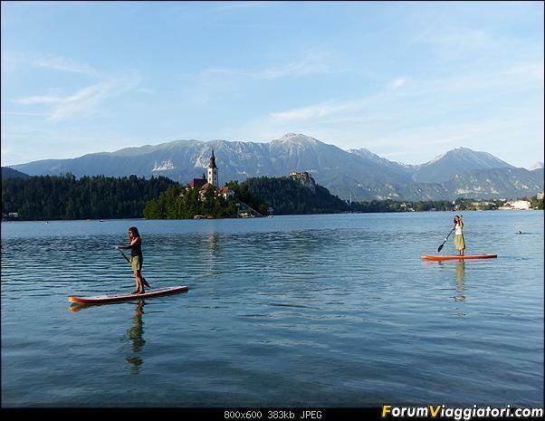 Slovenia, polmone verde d'Europa-321-p1800540.jpg